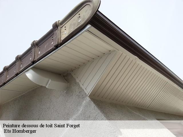 Entreprise peinture dessous de toit et boiserie à Saint Forget tel: 01.85.53.42.50